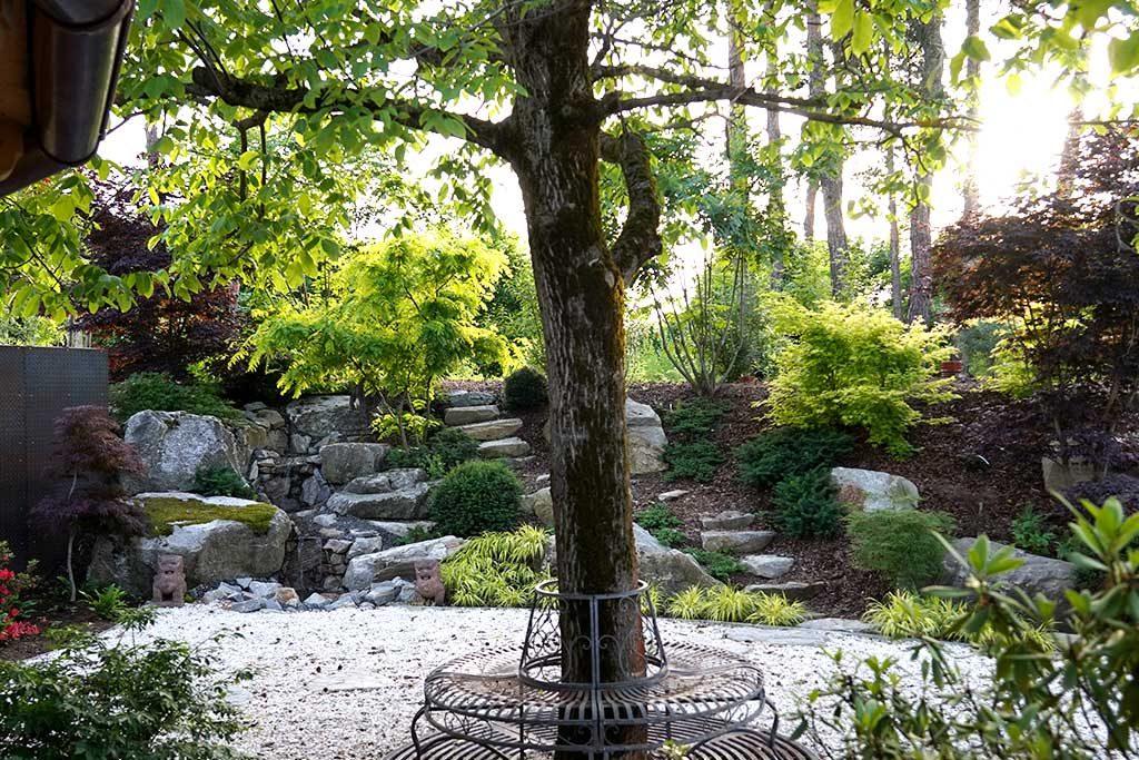 Wasserspiele - Gebiet mit Bäumen